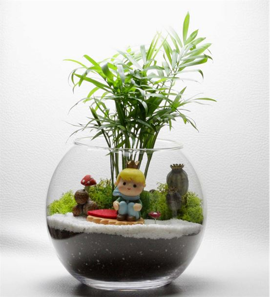 Minyatür Bahçem Teraryum Aranjmanı