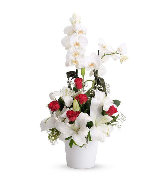 Mutlu Kalpler 2 Dal Beyaz Orkide Aranjmanı