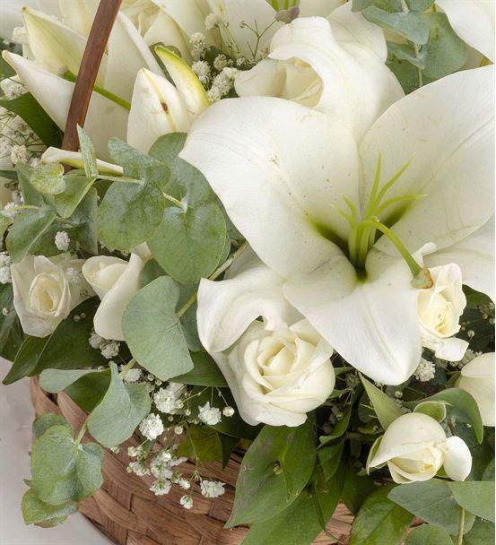Portonovo Sepette Ayıcıklı Beyaz Lilyum Aranjmanı