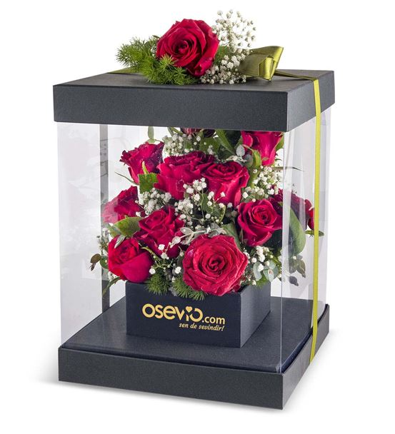 Santo Domingo Red Roses