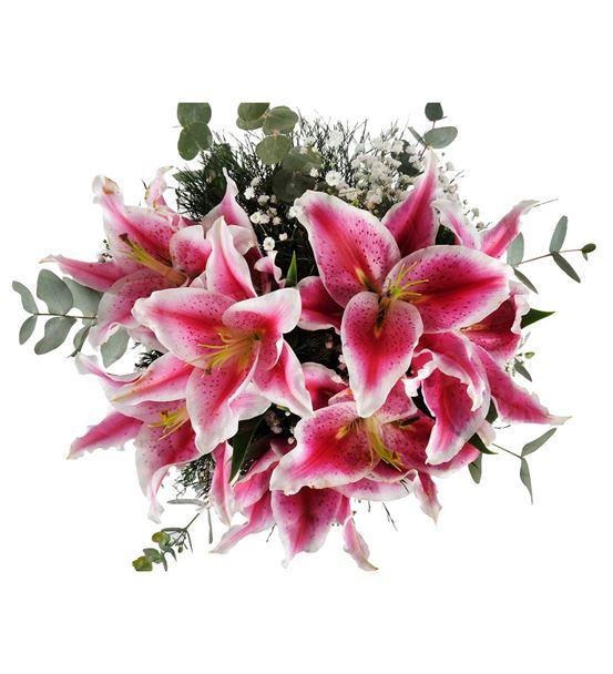 Sevgi Dansı Pembe Lilyumlar Çiçeği