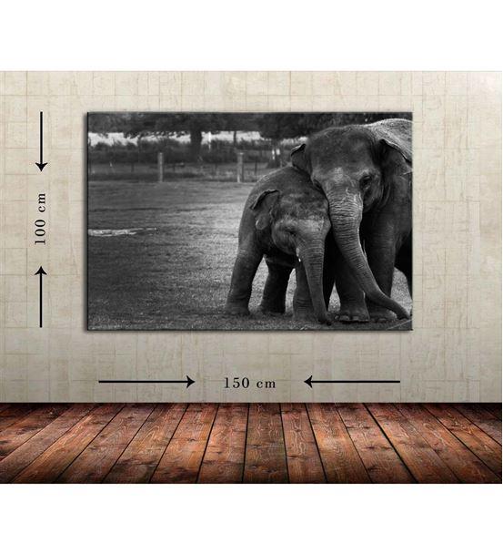 Siyah Beyaz Fil Büyük Boy  Kanvas Tablo 100x150 cm