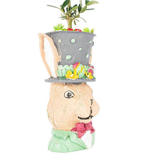 Tavşan Serisi Zeytin Bonsai Tasarım-Kahverengi