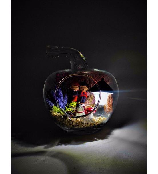 Teraryum Işıklı Sevimli Çift-Ebame0034