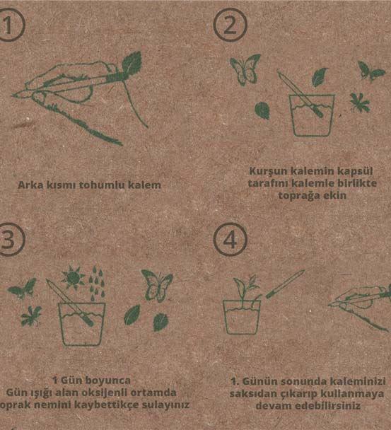 Karaçam Tohumlu Organik Kişiye Özel Ahşap Kalem 5'