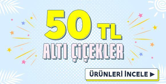 50TL Altı Çiçekler