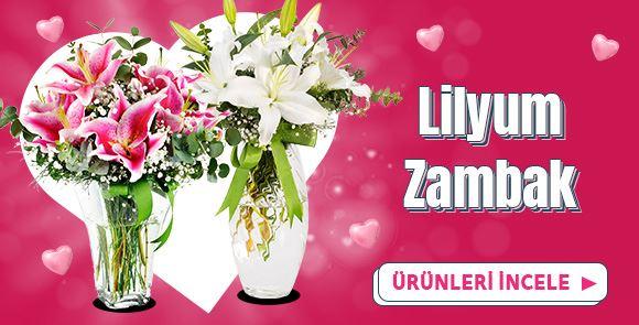 Lilyum/Zambak